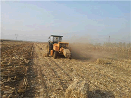 Crusher Type Square Balers